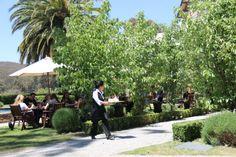 Outdoor dining @ Bellinzona
