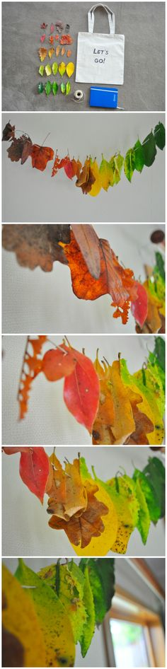 Rainbow leaves for autumn educação Autumn Crafts, Nature Crafts, Crafts For Kids To Make, Art For Kids, Kids Crafts, Autumn Activities, Activities For Kids, Discovery Day, Nature Table