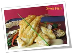 Swai fish benefits - Parmesan Swai Fish Photo