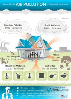 Invest in your health with an air filter Here's some information about indoor pollution and the best air purifiers allergies can be treated with. Air Pollution Facts, Air Pollution Project, Environmental Justice, Environmental Science, Allergies, Air Care, Asthma Symptoms, Home Schooling, Indoor Air Quality