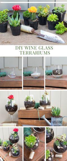 DIY Wine Glass Terrariums