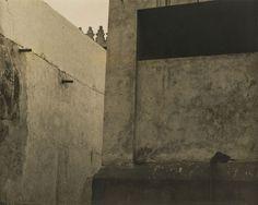 Nasreen Mohamedi, Untitled