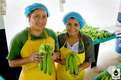 Ghostwriting Blog: Promoted Fair Trade Awareness Month