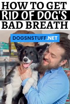 Do you know how to get rid of dog bad breath? Here is list of what you can do! #doghealth #dogtips #doghacks