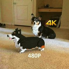 This is why 4K looks better! Now I know why!  More: http://www.tweaktown.com