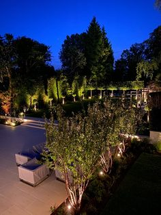 A well considered lighting design to stunning effect in a recent garden design project in Harpenden, Hertfordshire. Garden Design London, Wells, Portfolio Design, Lighting Design, Design Projects, Amanda, Dolores Park, Home And Garden, In This Moment