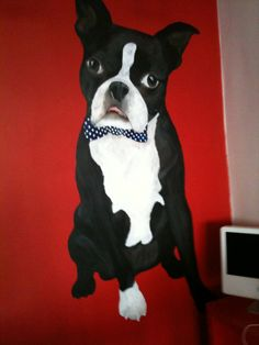 Dog&Co Groomers & Pet Boutique