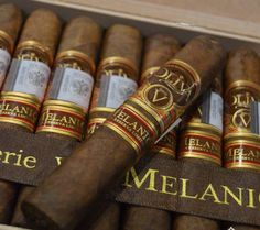 Oliva Melanio V In the top 10 of My All Time Favorite Cigars. Cigars And Whiskey, Pipes And Cigars, Whisky, Famous Cigars, Cuban Cigars, Cigar Humidor, Cigar Boxes, Pipe Smoking, Cigar Smoking
