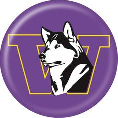 University of Washington Huskies disc
