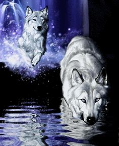 Wolven glitter plaatjes