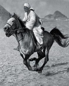 Beduin, Egypt, 1929 photo by Hungarian photographer Martin Munkácsi