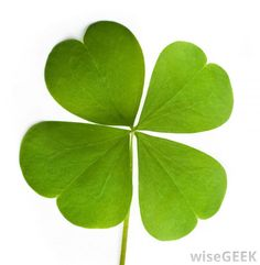 The luck of the Irish is a peculiar phrase that may have multiple meanings.