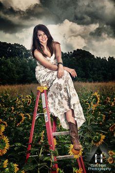 .flower fields @ carlsbad?