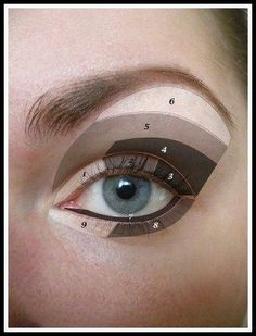 Tutorial reference eye diagram parts of the eye basic eye eye makeup tipsokey eye makeup tips for a catchy and impressive look ccuart Gallery
