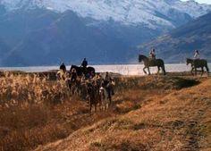 Lake Como horse riding
