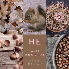 Christian Facebook Cover, Beautiful Collage, Thought Of The Day, Orange Brown, Sweet Words, Good Morning Quotes, Inspirational Thoughts, Color Trends, Peach