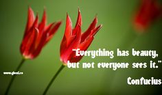 """""""Everything has beauty, but not everyone sees it."""" Confucius"""