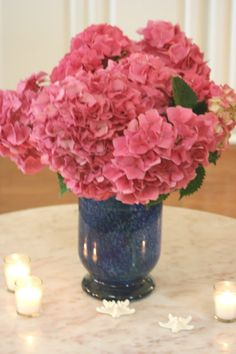 ciao! newport beach: today's hydrangeas