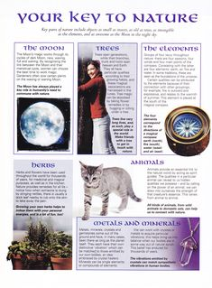 Book of Shadows:  BOS Your Key to Nature page.