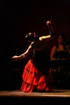 Flamenco Dancer - Ely