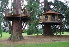 tree houses for kids | better than one tree covered in fun? Having a tree house and tree ...