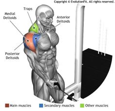 SHOULDERS - ONE ARM CABLE SIDE LATERALS RAISE