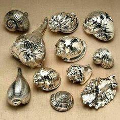 Spray painted shells