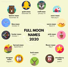 Full Moon names and dates in 2020 - moon infographic Moon Phases Names, Full Moon Names, Next Full Moon, Moon Hunters, Corn Moon, Sturgeon Moon, Moon Date, Strawberry Moons, Full Moon Ritual