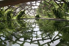 The Pavilion of the Lingering Clouds by Wang Shu. This was a beautiful wooden web arching over the green glossy pond. There were frogs croaking hidden in the grass. Chaumont Garden Festival 2013