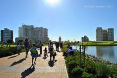 As cities stretch out and up, eco-friendly urban green spaces become places of public pride. Just as Central Park is integral to life in New York City, Cape Town CBD has its own unique urban green space in Green Point Park!