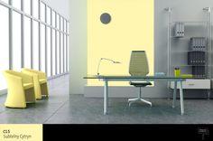 kolory_ścian_w_biurze