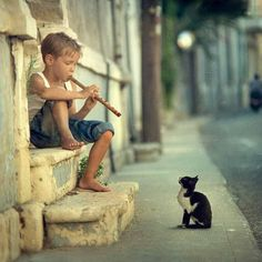 Adorable concert for one — Boy plays music for a kitten on the street...sweet photo