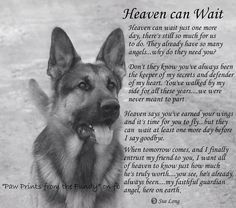 Heaven can Wait Art Print by Sue Long. All prints are professionally printed, packaged, and shipped within 3 - 4 business days. Dog Loss Poem, Dog Loss Quotes, Loss Of Dog, Pet Loss, Cute Dogs And Puppies, I Love Dogs, Waiting Quotes, Dog Poems, Heaven Can Wait