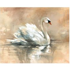 Swan Lake Canvas Wall Art ($498) ❤ liked on Polyvore featuring home, home decor, wall art, pictures, animals, art, decor, bird picture, bird wall art and leftbank art