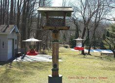 Mason Jar Bird Feeders ~ :: Hometalk