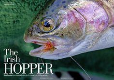The Irish Hopper. Fishing Magazines, Irish, Pets, Animals, Animals And Pets, Animales, Irish Language, Animaux, Animal