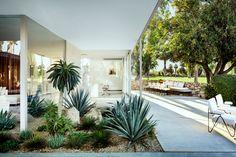 Home Interior Cuadros .Home Interior Cuadros Spring Landscape, House Landscape, Landscape Design, Contemporary Landscape, Garden Design, Palm Springs Häuser, Palm Springs Style, Palm Springs Mid Century Modern, Coastal Landscaping