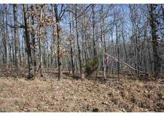 Block 3 Lot 12, Wappapello, MO  63966 - Pinned from www.coldwellbanker.com