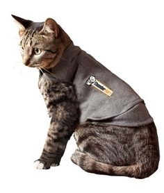 Brand New THUNDERSHIRT - CAT THUNDERSHIRT (MEDIUM) 'CAT PRODUCTS - CAT HEALTH - BEHAVIOR CONTROL' * For more information, visit image link. (This is an affiliate link and I receive a commission for the sales)
