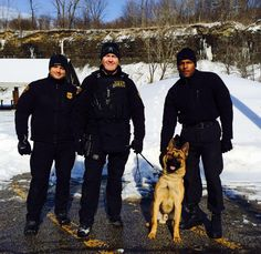 K9 assigned to the Cleveland Police's SWAT unit. Hometown represent!