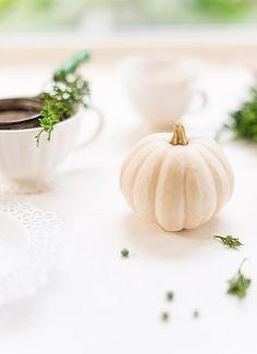 ~ Autumn White Whispers ~
