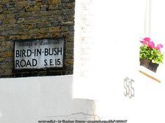 Bird-in-Bush Road, Peckham (C) Stephen Craven :: Geograph Britain and Ireland