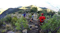 Nos vemos en el atardecer de la capital a las 19:30 hrs. en el patio de STGOMRCO >>> @parquemet.cl - Co. San Cristóbal. Visítanos y únete te esperamos para entrenar en grupo. : info@stgomrco.com  #stgomrco #mammutchile #cabradelmonte #cervezaquimera #nutricionenbalance #club #equipo #crew #training #run #runner #mountain #trailrunning #ultratrail #running #landscape #outdoors #gooutside #goprooftheday #picoftheday #parque #city #santiago #chile