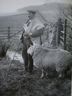 .the maud — the traditional shepherd's plaid that's woven and worn in the Scottish Borders. You can see one above being used for its original function — protecting the shepherd and his lambs from the elements.