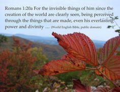 ... Romans 1:20 poster   by Martin LaBar