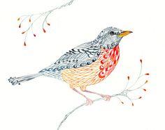 Lacy Robin aquarelle bird