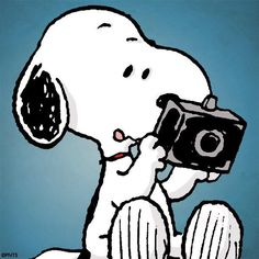 Snoopy with camera