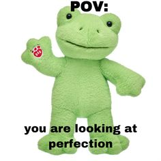 Frog House, Frog Art, Cute Frogs, Green Frog, Pinterest Memes, Frog And Toad, Build A Bear, Fb Memes, Wholesome Memes