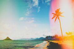 Summer day in hawaii
