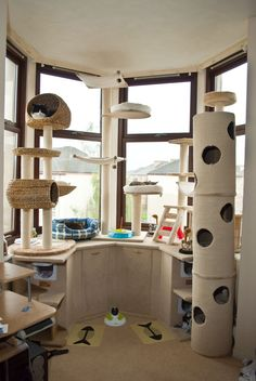 Cat room. This would be awesome. To be then connected to a catio, and a small snuggly corner with bookshelves where the humans and cats could have some proper snuggly time...